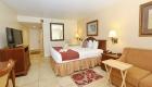 Garden View Handicap Accessible Room Bed